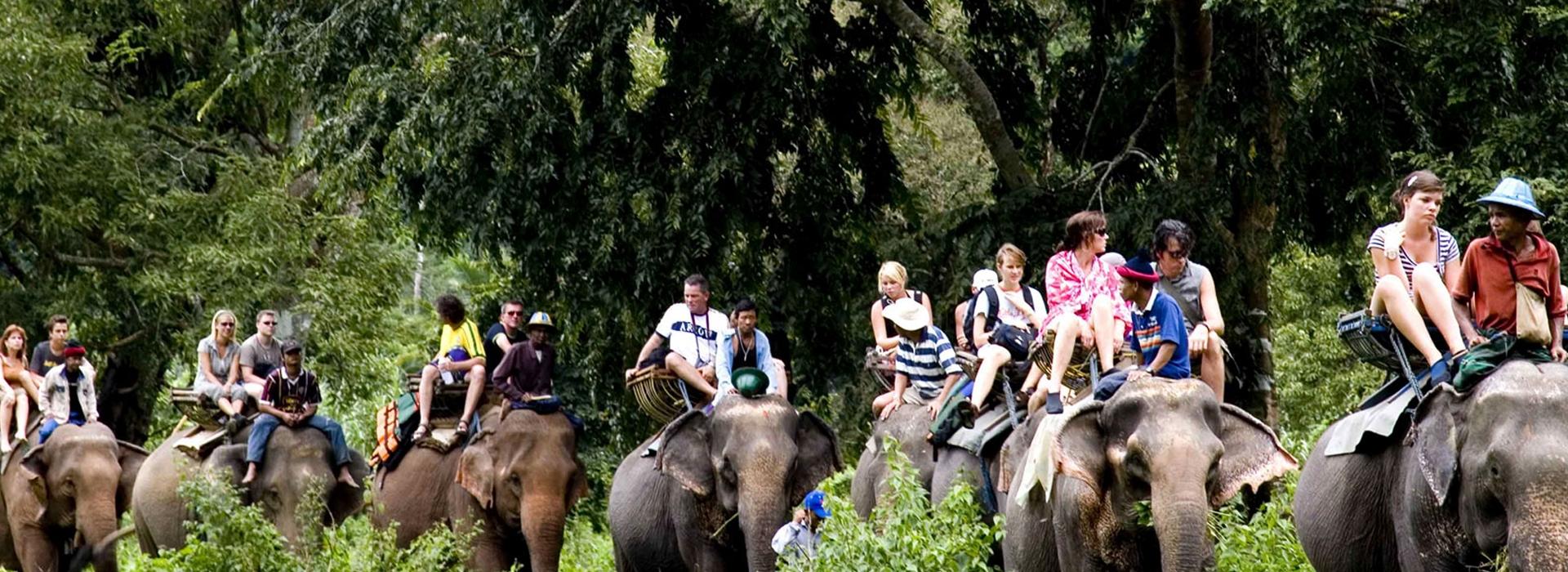 Bardiya national park (3 Nights/ 4 Days)