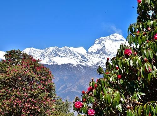 Poonhil Trek in Nepal