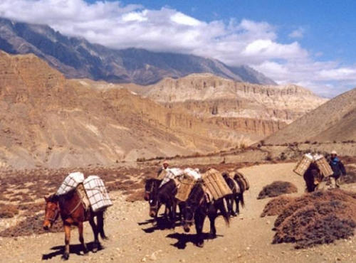 Lower Mustang Trekking
